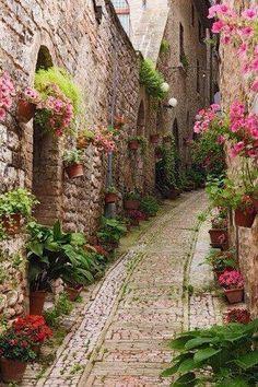 El jardín de Monet. Giverny. Francia