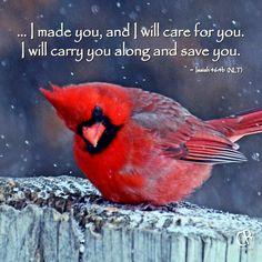 Isaiah 46:4b