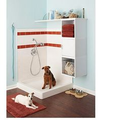 Doggie Bath!