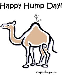 hump day camel images | happy_hump_day_camel