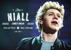 "Niall ""Irish and Proud"" Horan x <3"