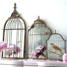 Front of birdcages with a picture behind it
