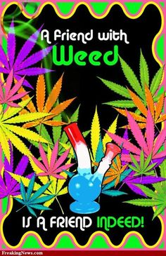 ☮ American Hippie Quotes ~ Weed 420