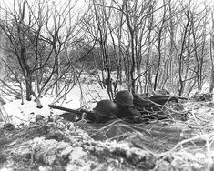 45th Infantry Division December 1944