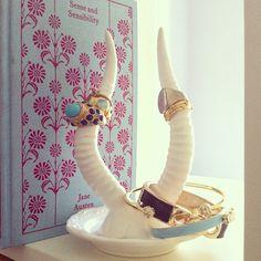 Antler jewelry holder.