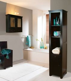 bathroom storage cabinet.  Want that black one.  Maybe add some doors