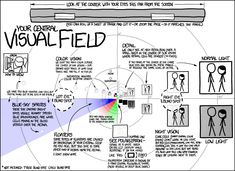 Xkcd- Visual Field