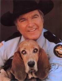 The Dukes of Hazzard! :D sheriff rosco p. coltrane & flash