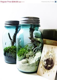 Mason Jar Terrarium - DIY sand, moss, twig, shells, rock.