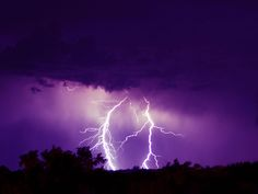 purple images - Bing Images