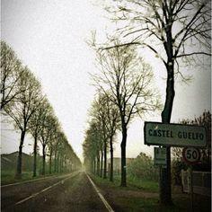 Road near Imola