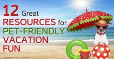 Here are 12 resources to help you locate pet-friendly hotels, restaurants, and other information you may need when you travel with your pet. http://healthypets.mercola.com/sites/healthypets/archive/2014/08/14/12-pet-friendly-travel-resources.aspx