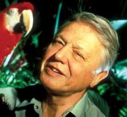 David Attenborough will officiate our wedding.