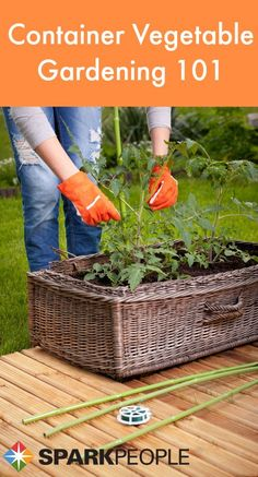 If you're short on space, want to create a unique look for your garden or don't have high-quality soil, you can still grow fruits and veggies! Here's what you need to know for a successful container garden. | via @SparkPeople #food #nutrition #vegetable