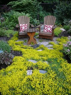 Seating area  surrounded by a sea of yellow flowering sedum  by Candace Mallette Landscape  Garden Design.