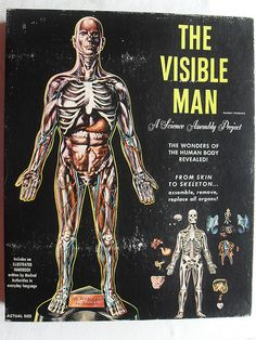THE VISIBLE MAN VINTAGE 1960s Model Toy Box