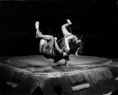 Sumo wrestlers, 2011 by Tomasz Gudzowaty