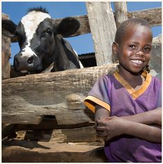 Give the gift of livestock through Heifer International. For as little as $20 you can give a family a flock of chickens.