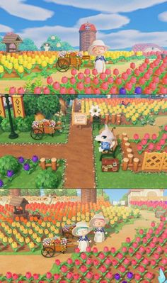 My Friend's Beautiful Tulip Field 🌷🌷🌷 : AnimalCrossing