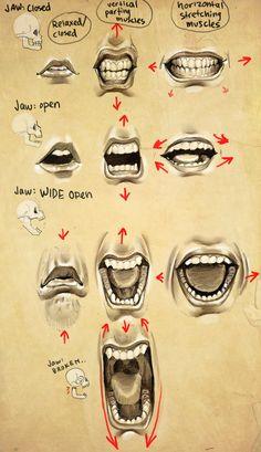 Expressions- Mouth + Jaw by eponagirl.deviantart.com on #deviantART