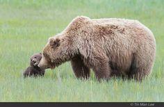 Momma Near ♥'s Her cub :)