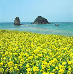 Cheju Island, South Korea