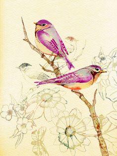 Violets by Colleen Parker, via Flickr
