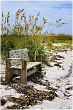 Caladesi Island, Florida.