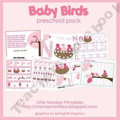 Baby Birds Preschool Pack