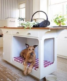 Pup does need a place in the kitchen!