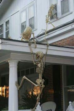 Skeletons B&E