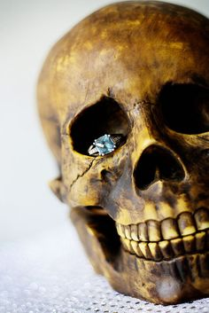 Amazing ring/skull shot from an engagement shoot or Halloween Wedding