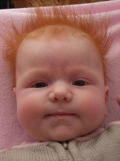 ginger babiessoooo cute on pinterest  120 pins