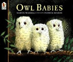 Owl Babies {Martin Waddell}