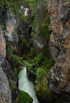 ✮ Maligne Canyon in Jasper National Park, Alberta, Canada