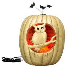 Large Owl Light Pumpkin