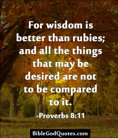 For wisdom is better than rubies; and all the things that may be desired are not to be compared to it. -Proverbs 8:11