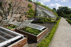 cold frames and glasshouse, north yorkshire. (national trust, j miller)