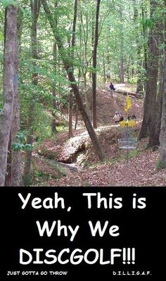 Why do we love disc golf?