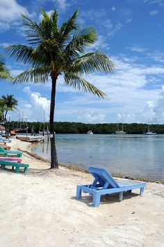 Tropical Beach (Key Largo, Florida)
