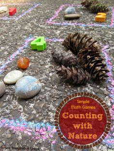 Outdoor Math Games for Fall: Sorting and Counting with Natural Materials