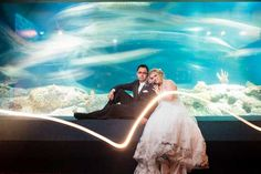 Read all about Ashlyn & Adam's blue-hued Aquarium wedding on Poptastic Bride. Photos by Richard Bell Photography.