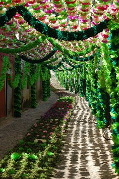 Beautiful decorated streets during Festival of the Tabuleiros in Tomar, Portugal