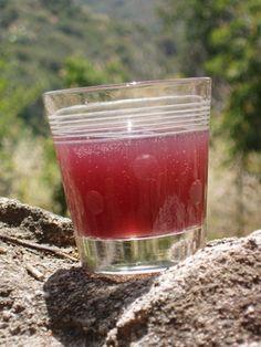 Homemade Sodas: Water Kefir Drink Recipes
