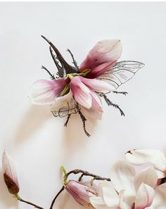 Maine based artist Kari Herer makes these beetles with pink magnolia petals and her black ink sketches.
