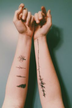 Interesting tree tattoos, arms.