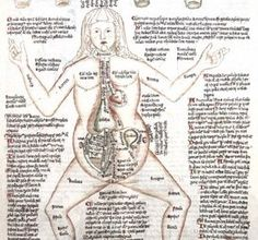 This text from c.1420 offers a full-figure anatomy of pregnant woman labelled with ailments.