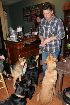 Dog friendly Piccola