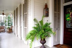 New Orleans Home - Exterior paint: Spring in Aspen; shutter paint: Brandon Beige, both by Benjamin Moore