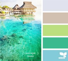 exotic beach colors create a beach themed color scheme for your coastal home.